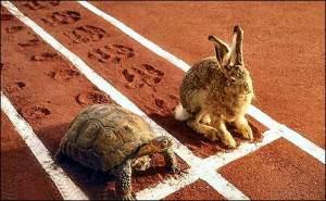 http://3.bp.blogspot.com/-pTB4vSTNlpQ/Tu6-z8aPxAI/AAAAAAAADZI/VEdRldYomf0/s200/tortoise-and-the-hare.jpg